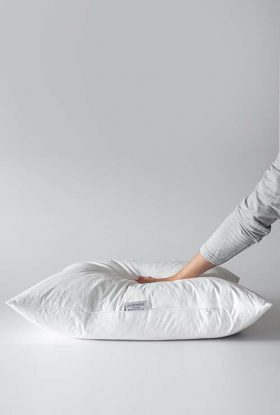 Duck Feather Cushion Inners